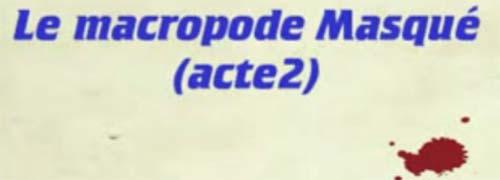 macropode masqué 2